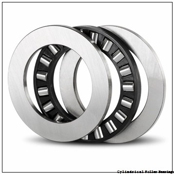 5.512 Inch | 140 Millimeter x 8.268 Inch | 210 Millimeter x 2.756 Inch | 70 Millimeter  INA SL05028-E  Cylindrical Roller Bearings