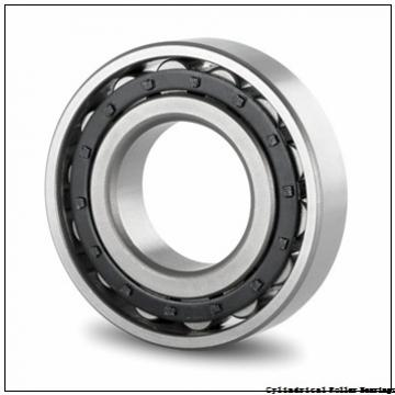 4.724 Inch | 120 Millimeter x 7.087 Inch | 180 Millimeter x 2.362 Inch | 60 Millimeter  INA SL05024-E  Cylindrical Roller Bearings