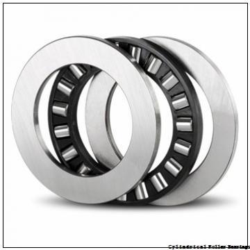 4.724 Inch | 120 Millimeter x 7.087 Inch | 180 Millimeter x 2.953 Inch | 75 Millimeter  INA SL06024-E-C3  Cylindrical Roller Bearings