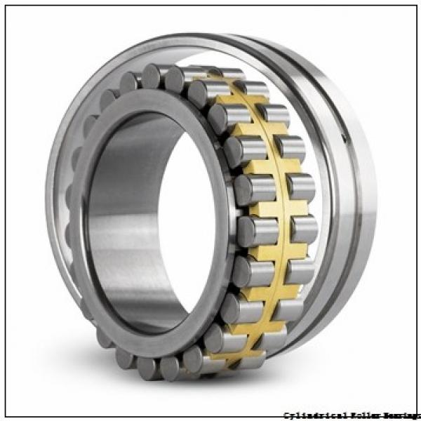 3.15 Inch | 80 Millimeter x 4.921 Inch | 125 Millimeter x 1.339 Inch | 34 Millimeter  INA SL183016-C3  Cylindrical Roller Bearings #1 image